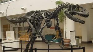 Dionsaur